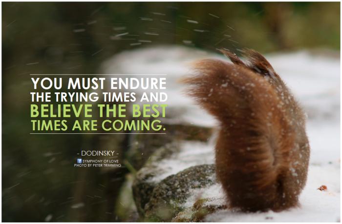 17. We endure.