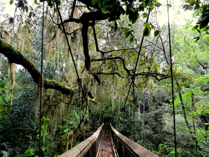 10. Ravine Gardens State Park in Palatka, FL