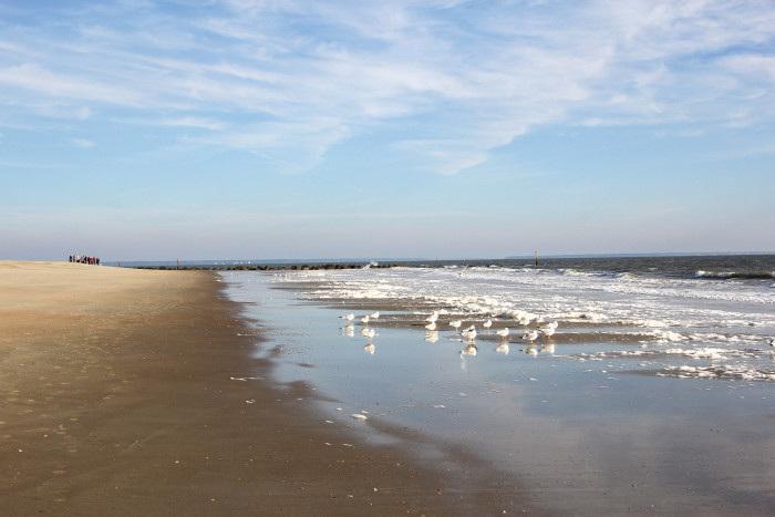 Just another great shot of Tybee Island...