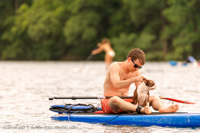 8) Paddleboard (or sit down with your dog) at Lady Bird Lake in Austin!