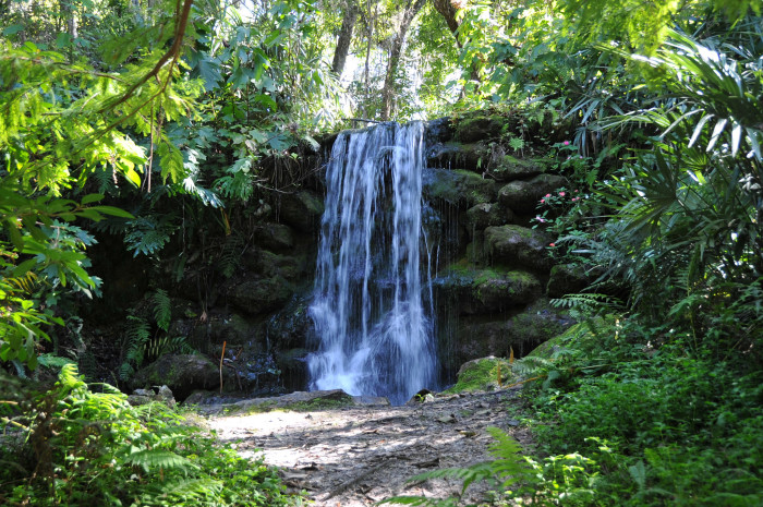 3. Rainbow Springs State Park, Dunnellon, FL