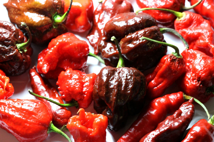 15. When it was announced that South Carolina held the title for the birthplace of the world's hottest pepper, the Carolina Reaper.