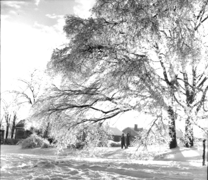 10) Blizzard of 1951