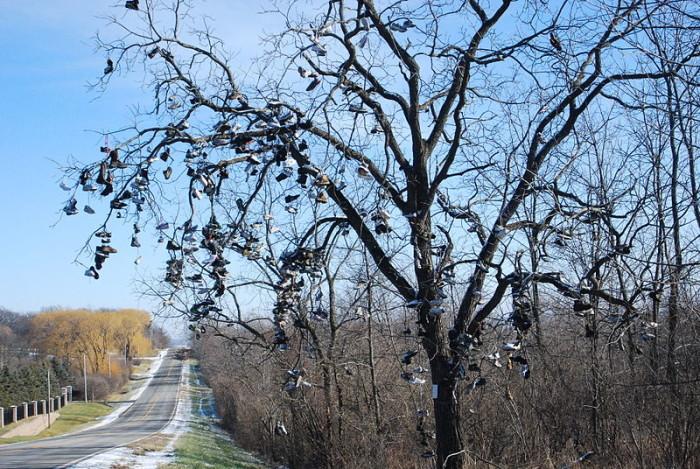 2.) Shoe Tree