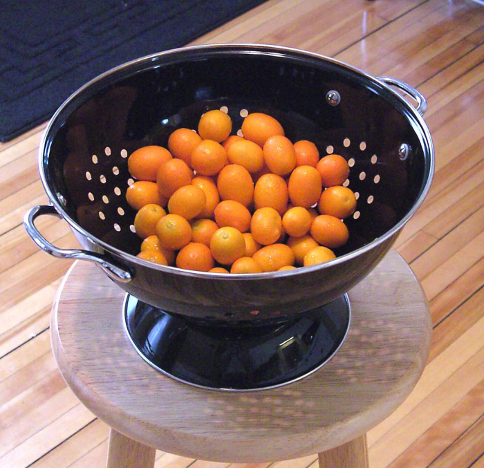 9. Kumquat - Adorable little citrus fruit that can be found all over the place.