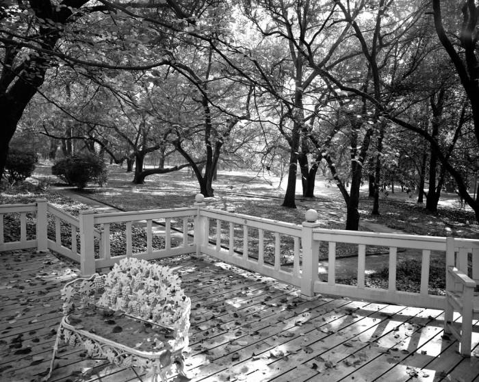 2. Hopeland Gardens