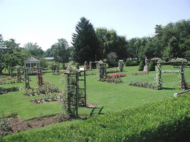 1. The Rose Gardens, Allentown