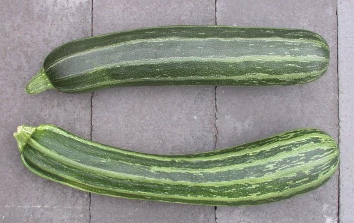 11) Zucchini Festival (Chardon) where zucchini is king.