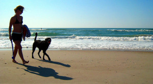 10 Amazing North Carolina Beaches Perfect For Your Next Summer Vacation