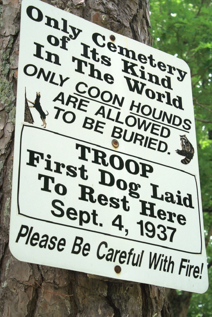 12) The Coon Dog Cemetery, located in Tuscumbia, has become a very popular tourist attraction and is the only cemetery of its kind in the world.