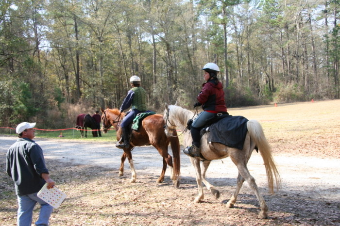 Horseback Riding in Worth, GA
