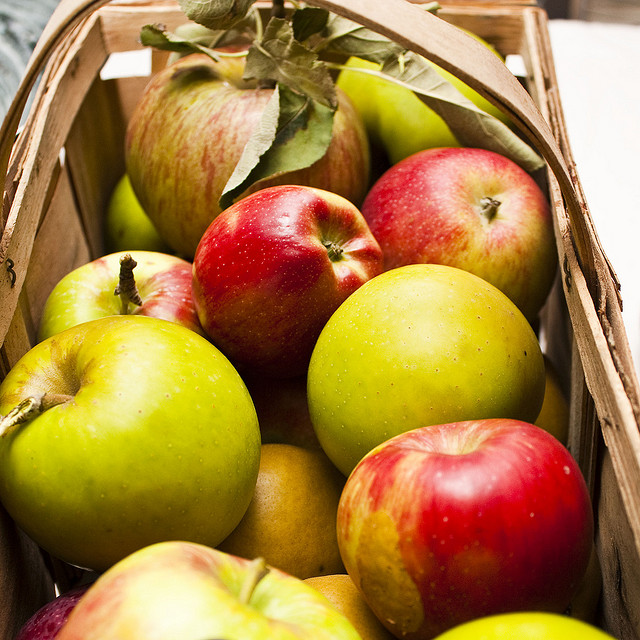 3. You used to spend your weekends picking apples or selecting the best pumpkin at a local pumpkin patch every fall.