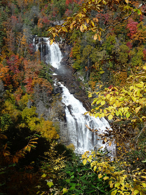 5. Whitewater Falls, located in Transylvania County, is the highest waterfall in the eastern region of the country.