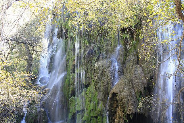 5) Gorman Falls in Colorado Bend State Park  - Bend