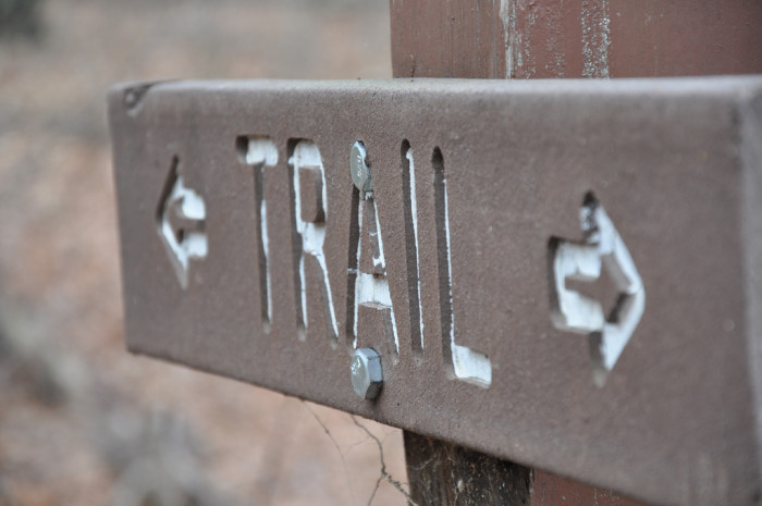 to great hiking trails from the Upstate to the Lowcountry...