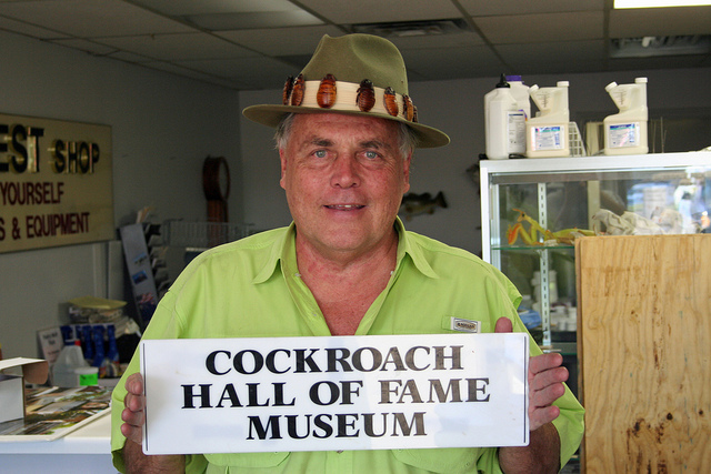 1) Cockroach Hall of Fame (Plano)