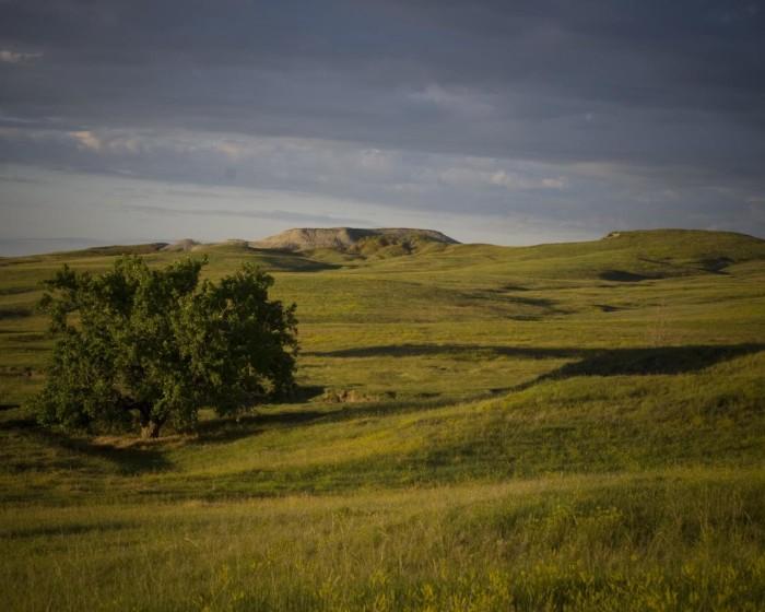 7. Oglala National Grassland, Harrison, NE