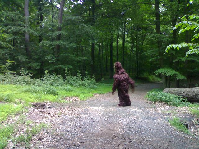 BONUS: Bigfoot