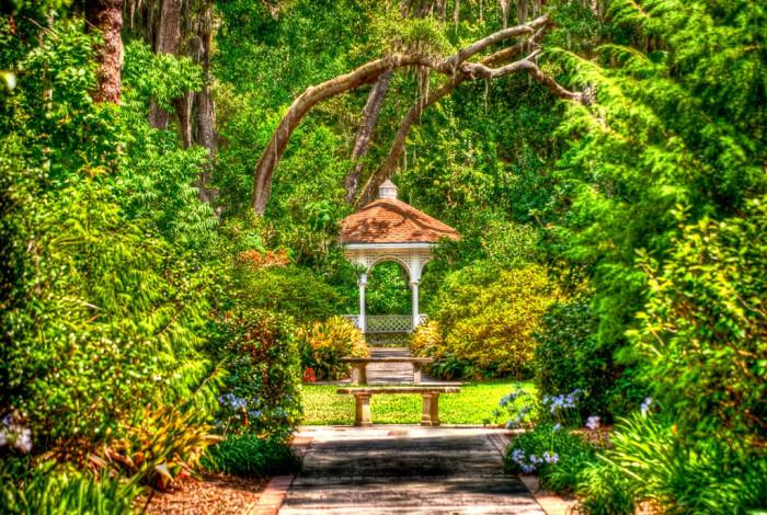 5.  Stroll Through the Harry P. Leu Gardens in Orlando