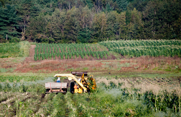 6.) Mechanical Corn Picker