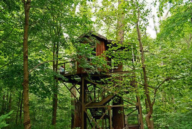 2. The Birdhouse Treehouse, Longwood Gardens, Chester County