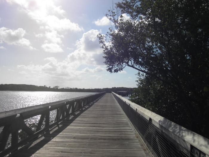 4. John D. MacArthur Beach State Park