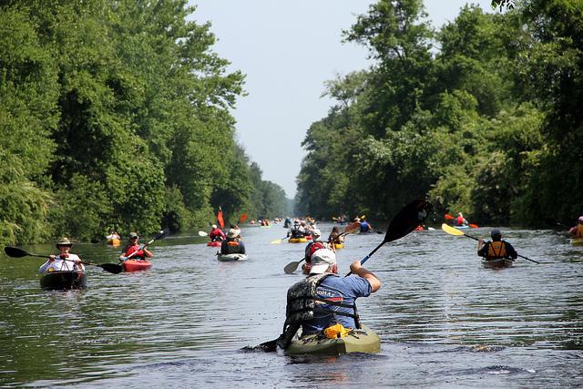12. Dismal Swamp State Park
