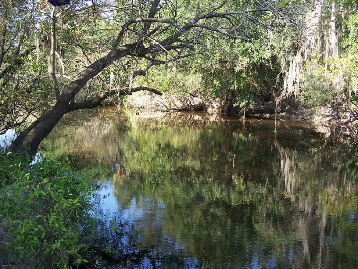 1. Little Manatee River State Park