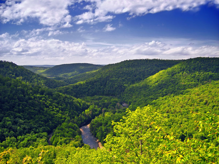 3. World's End State Park, Sullivan County