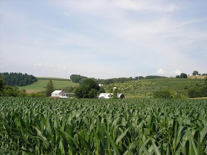 9. Rehmeyer's Hollow, York County