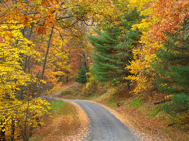 10. You know that no sight rivals the beauty of Pennsylvania leaves in autumn.
