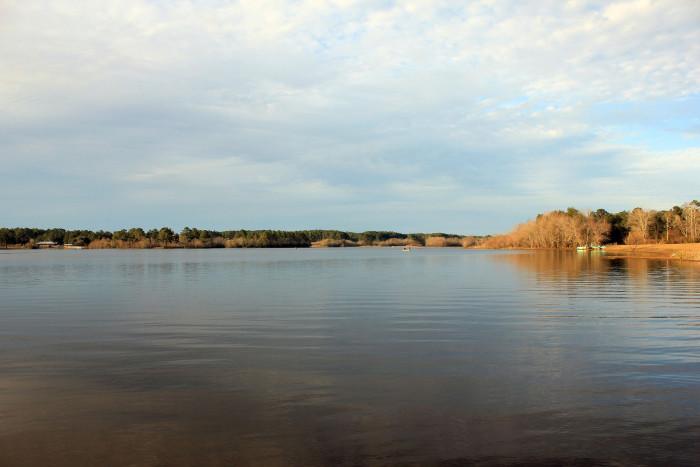 Main Lake at Reed Bingham State Park