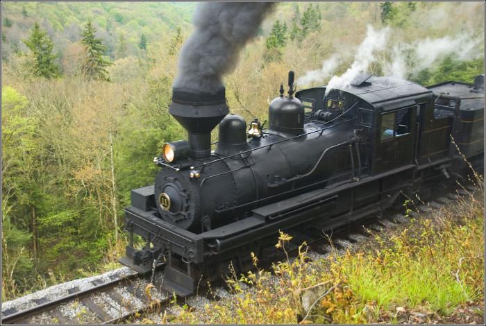 8. Cass Scenic Railroad