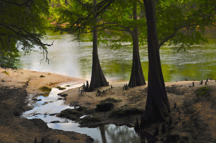 4. Stephen Foster, who wrote our state song, never visited Florida or even saw the Suwannee River.
