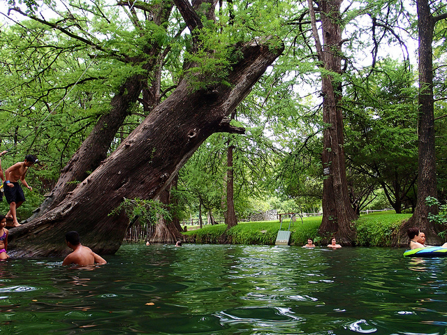14) Jump in one of the state's most beautiful natural swimming holes, Blue Hole in Wimberley. The old cypress trees lining the water will give you some much-needed shade, which is always welcome in the Lone Star State.