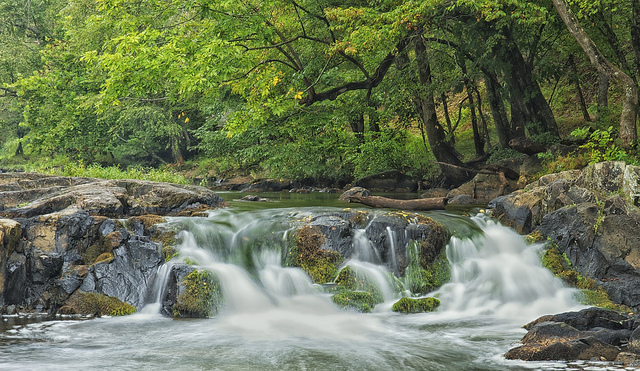 5. Eno River