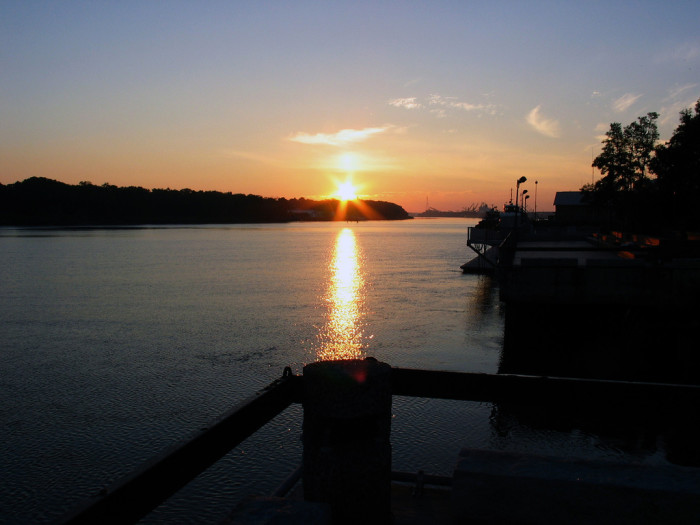 Another Savannah Sunrise
