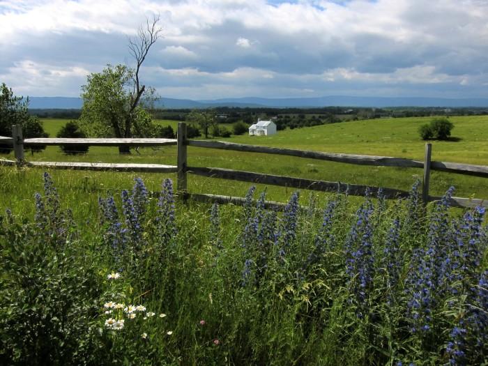 Belle Grove Land
