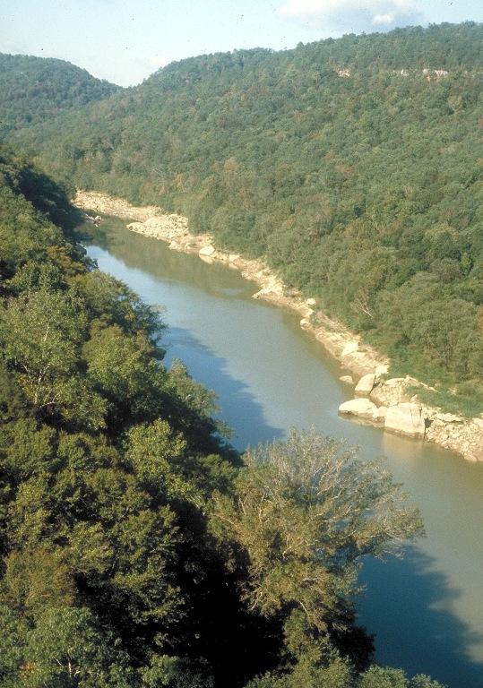 4. Big South Fork National River offers serene views of streams flowing through the mountains on an open top train. The views are just breathtaking.