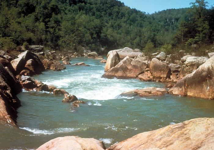 11)  Big South Fork National River - Oneida