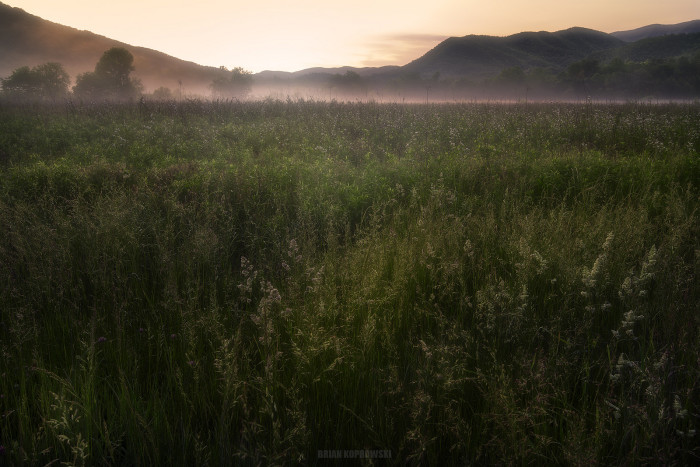 You can head down to Cades Cove Valley