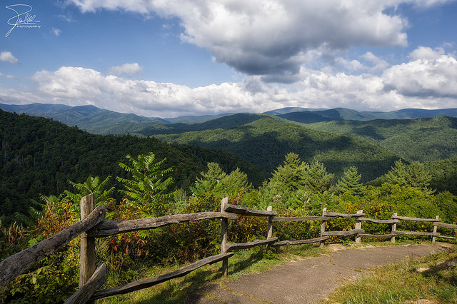 Or take in the Cataloochee Valley - it bleeds over into North Carolina, but Tennessee is neighborly.