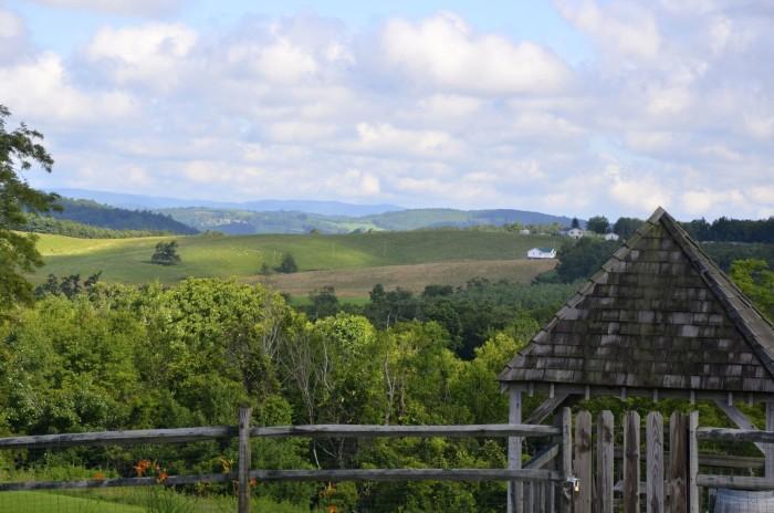 9. A Vintage Vineyard: Chateau Morissette, Floyd