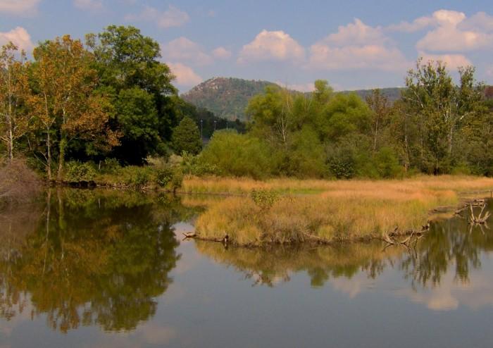11) Cove Lake