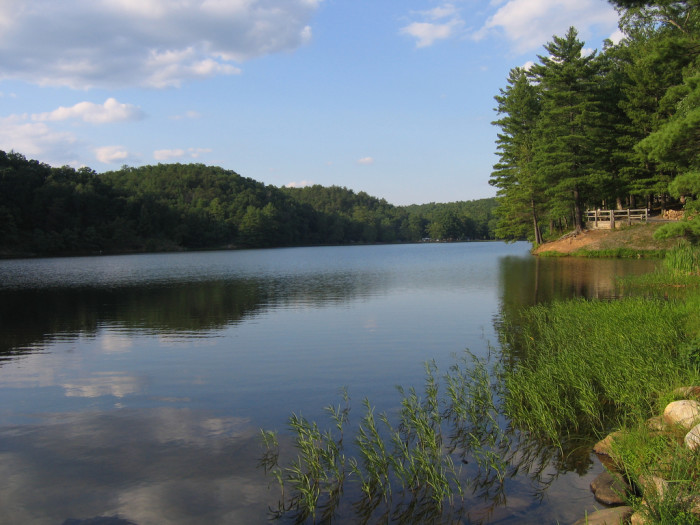 Visit one of the Shenandoah's many state parks, like Douthat State Park near Clifton Forge.