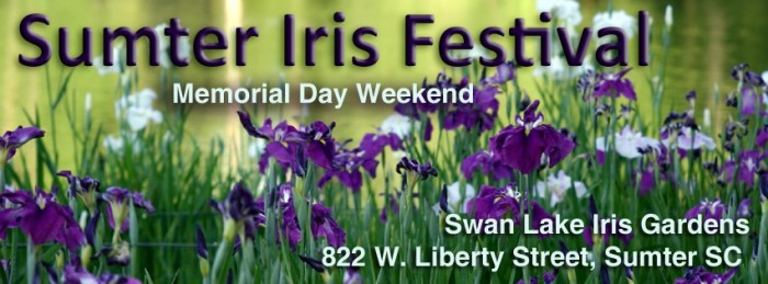 3. Iris Festival - Held in Sumter at Swan Lake. Come out and celebrate in the beauty and fun that abounds at this festival.