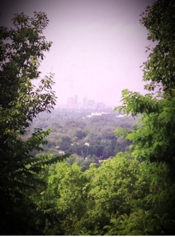 13. Iroquois Park Lookout in Louisville offers several different amazing views of lush, green woodlands, and the city itself.
