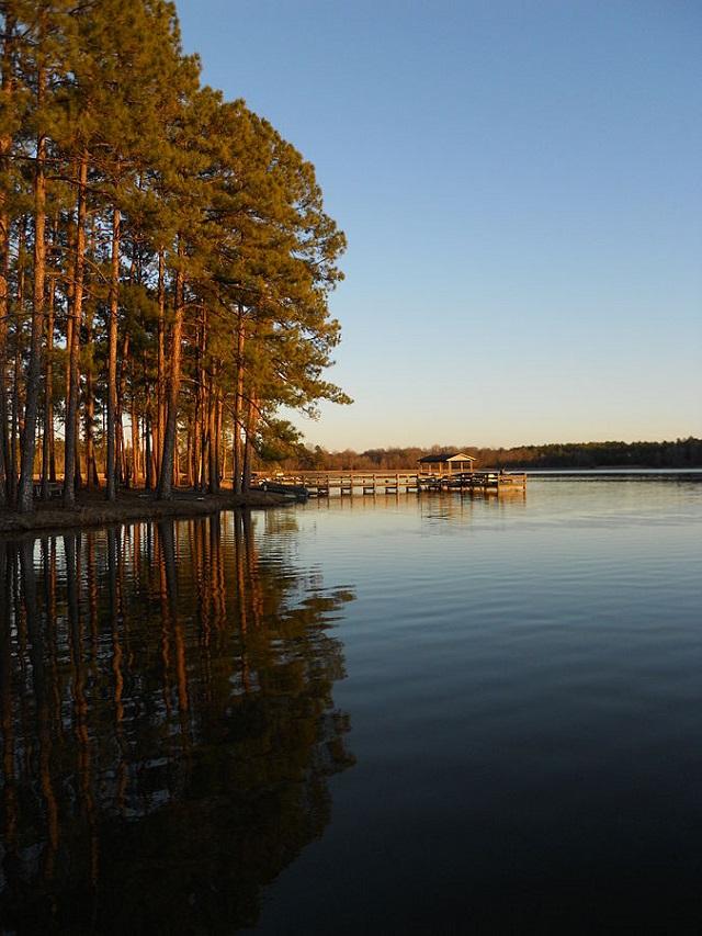 2. Lee County Lake