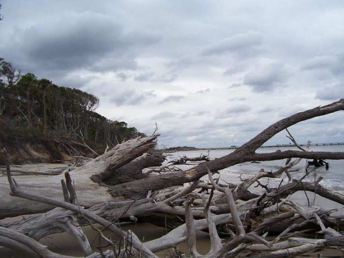 16. Big Talbot Island and Little Talbot Island