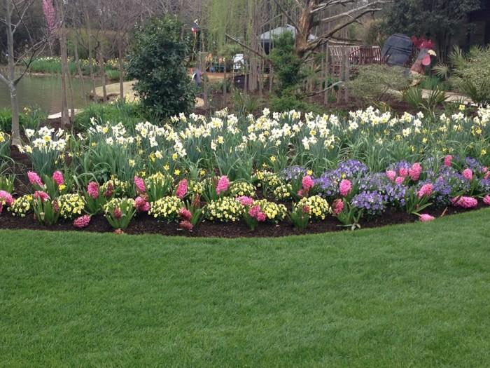11. Moore Farm Botanical Gardens, Lake City, SC